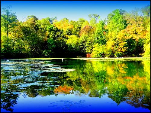 newyork reflection brooklyn image prospectpark dmitriyfomenko fall72013