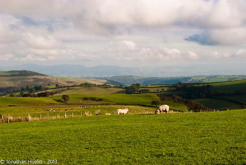 green wales landscape nikon view sheep hills vista denbighshire d3000