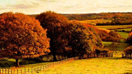 autumn england painterly weather rural photoshop fence painting landscapes artwork aperture warm exposure sunny farmland lancashire reds textured hff alienskin snapart applecrypt