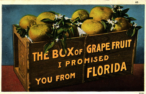 """The Box of Grapefruit I Promised You From Florida"" 
