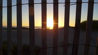 Fence | by acapacio