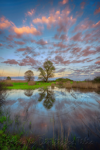 trees nature clouds reflections landscape nomi waterscape myvillage trikala thessaly
