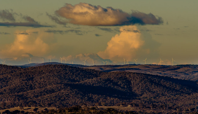 Wind Farm from a distant Black Mountain