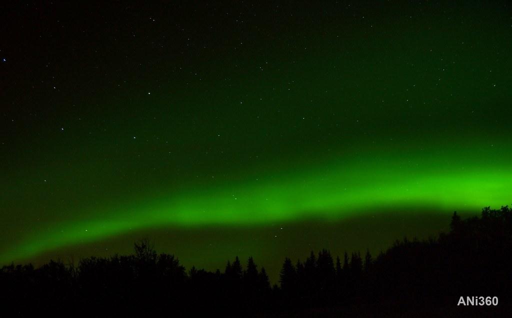Northern Lights 4 Elk Island National Park Northern