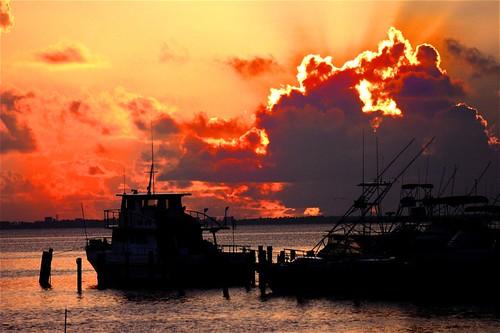 sunrise sebastian florida silhouettephotography