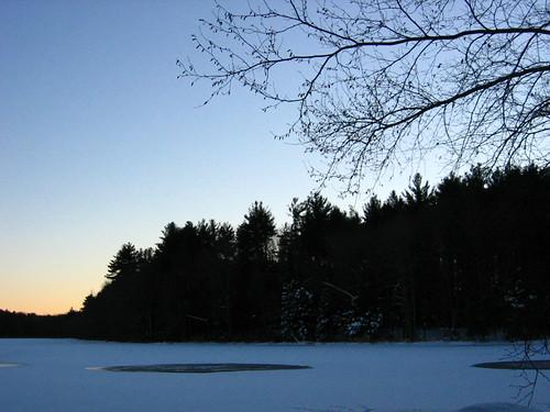 trees sunset 2 ice ims gastonpond