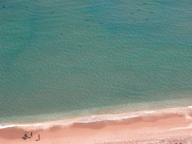 Families, Of Shark and Man, Share Pink Beach, Soft Waters Of Singer Island, Florida - IMRAN™ — 4000+ Views!