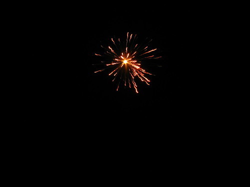 Fireworks1 | by Naveen Roy