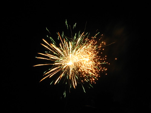 Fireworks2   by Naveen Roy