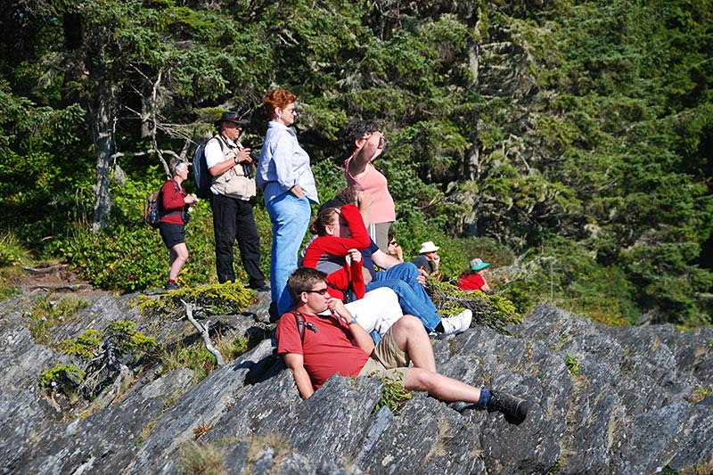 Whale Watching from the shore at Botanical Beach, Juan de Fuca Provincial Park, Port Renfrew, British Columbia, Canada