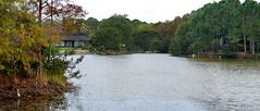 Morikami Japanese Gardens and Museum Panorama.  Delray Beach, Florida. Nikon D3200. DSC_0801-0806.