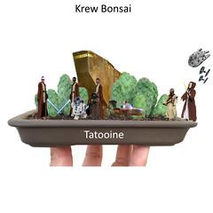 Krew Bonsai Tatooine