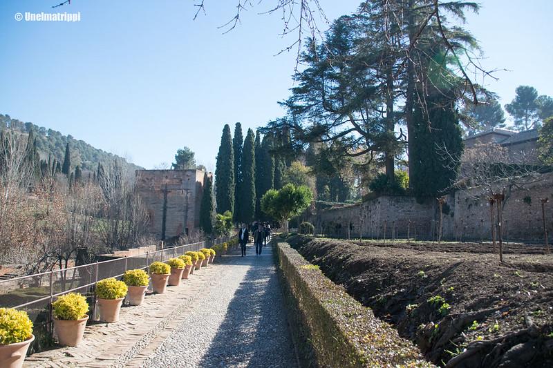 20170323-Unelmatrippi-Alhambra-DSC0590
