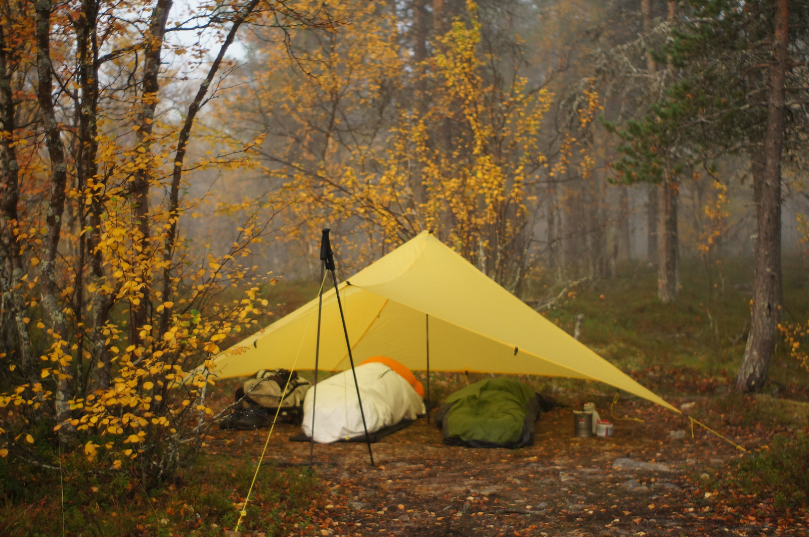 Mountain Laurel Designs TrailStar
