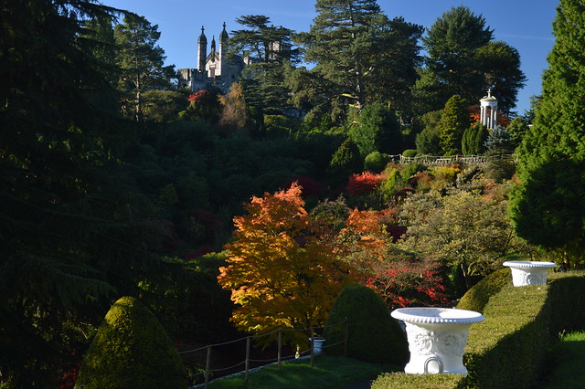 The Gardens and the Chapel