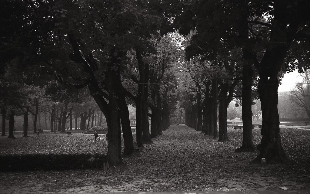 AFX014 | Alex Marshall | Flickr