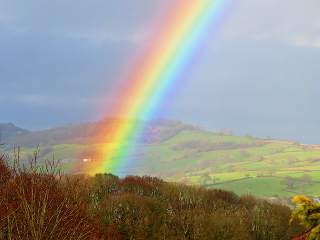 Somewhere Over The Rainbow #