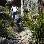 06 Viajefilos en Australia. Cathedral Rock NP 24