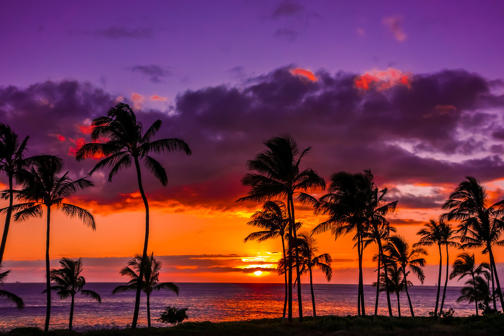 Image result for hawaii sunset""