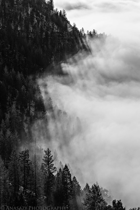 Edge of Fog