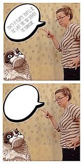 "Grumpy Cat says ""Meh"""