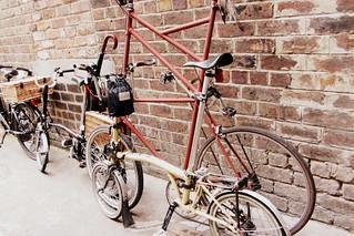 Edinburgh Harris Tweed Ride 2013 - Little and Large