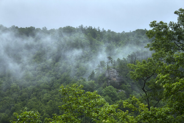 Devil's Canyon overlook, Daniel Boone National Forest, Wolfe Co, KY