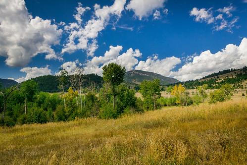 green rural canon landscape montana view 60d