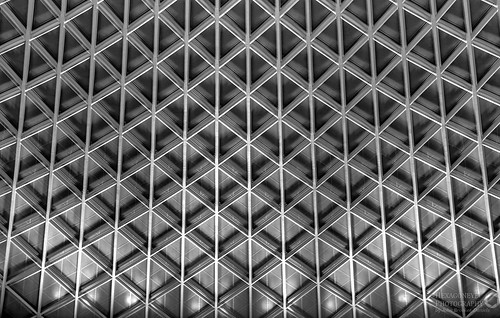 Kings Cross Roof B&W HDR | by Hexagoneye Photography