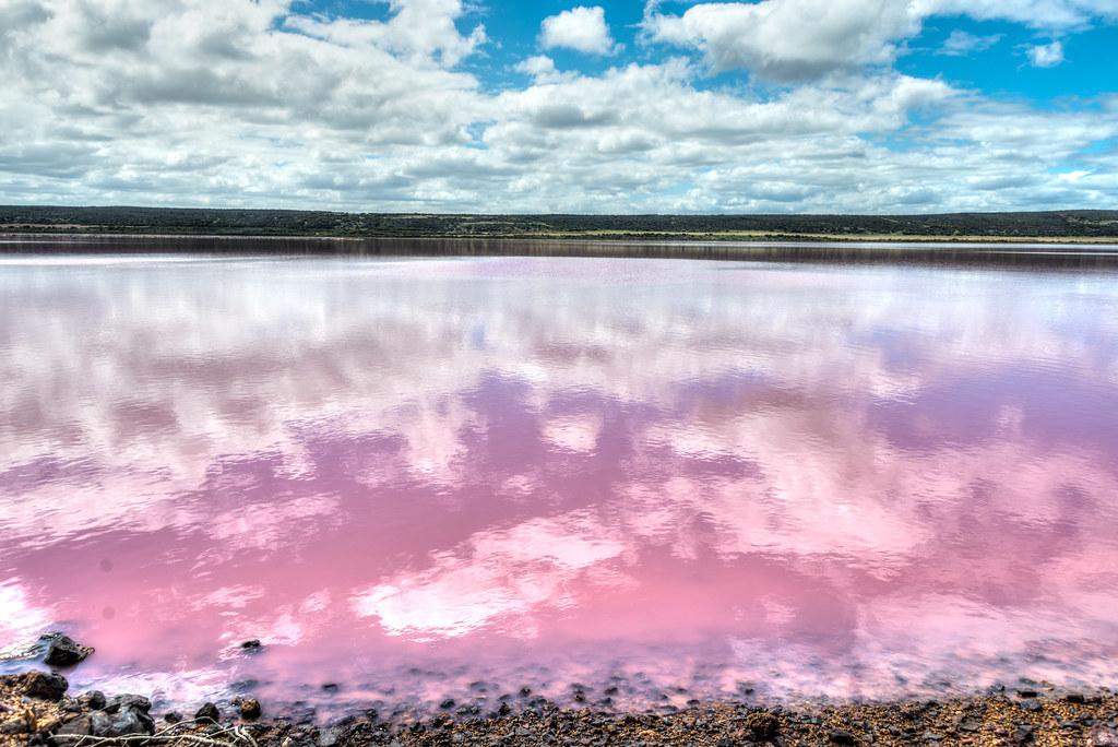 Pink Lake - Hutt Lagoon near Port Gregory, WA.
