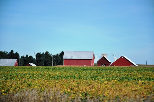 old trees red sky classic field barn rural vintage buildings illinois farm farmland september photoaday soybeans leecounty outbuildings sublette fmsphotoaday