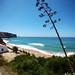 Surf Sistas Portugal May 2013