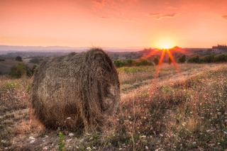 Time for Making Hay | by tommyscapes