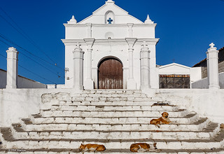 This church has gone to the dogs - Chichicastanengo, Guatemala | by Phil Marion (180 million views - THANKS)