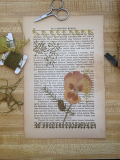 Pressed flower, paper and embroidery. Work in progress.   by jessicakelly