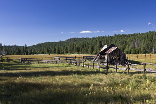 building tree nature grass barn fence landscape rust meadow littletruckeeriver