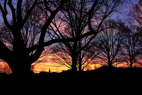 hoogledegits sunset spring march sunny