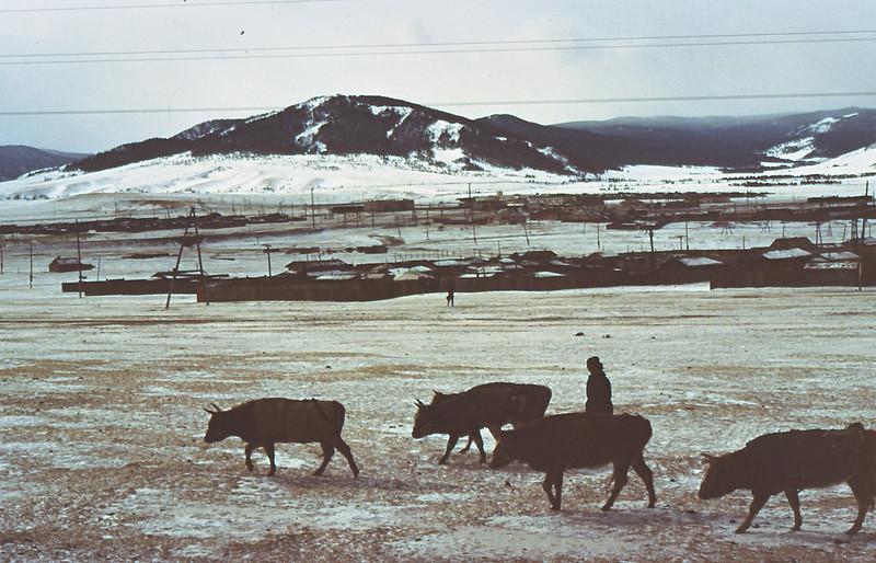 MONGOLIA 1994 01-0001