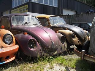 Brace of dead Volkswagen Beetle parts cars | Brace of dead V