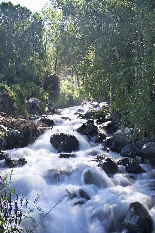 Aguas del Pirineo