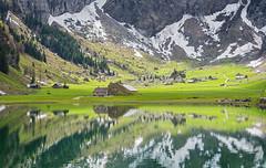Seealpsee landscape III