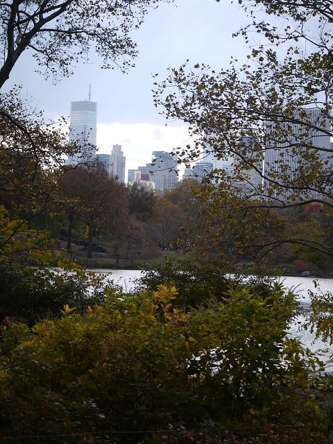 日, 2013-11-10 12:08 - Central Park
