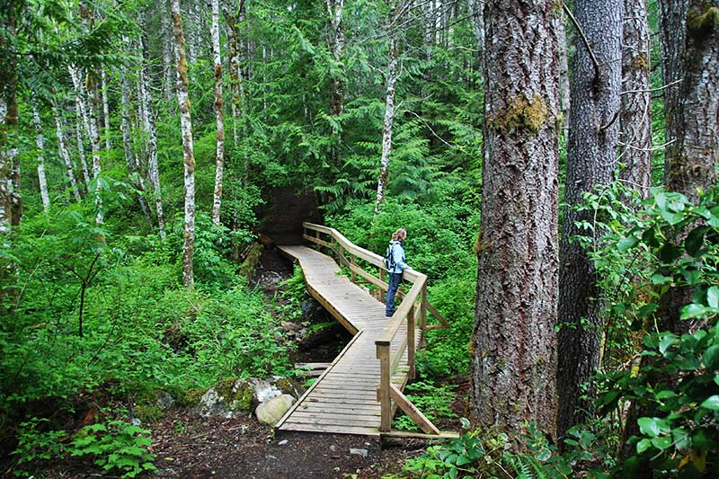 Hiking Trail in Spectacle Lake Park, Malahat, Victoria, Vancouver Island, British Columbia, Canada