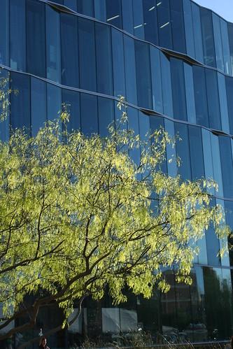 University of Arizona - Optics Building