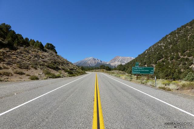 Tioga Road - Tioga Pass, California