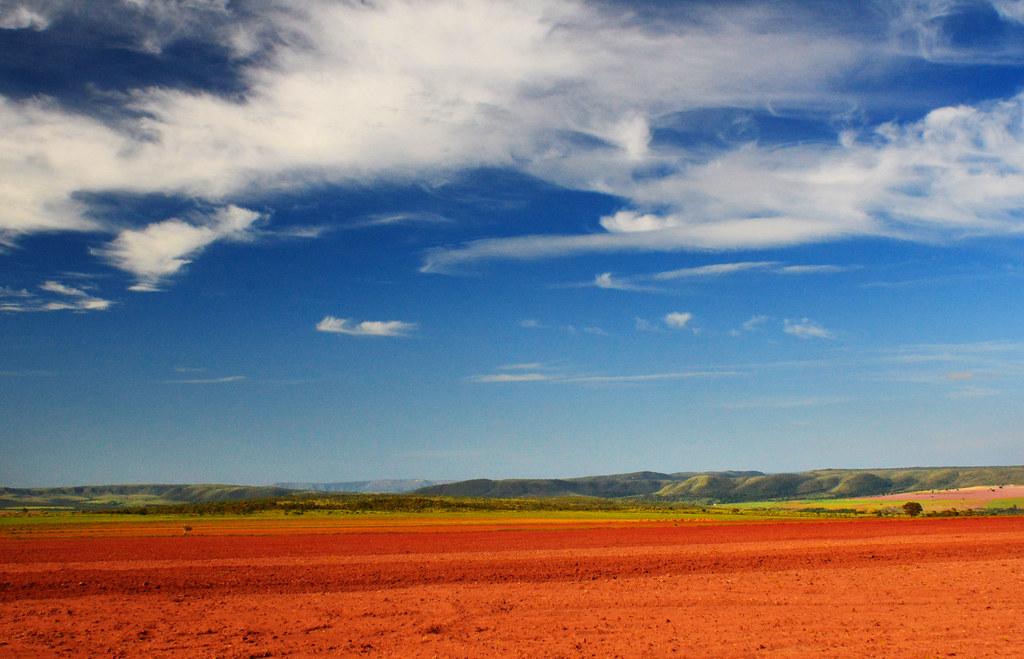 Agriculture in Cerrado
