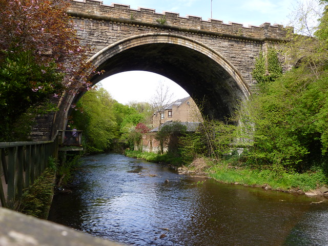 Bridge on the Water of Leith