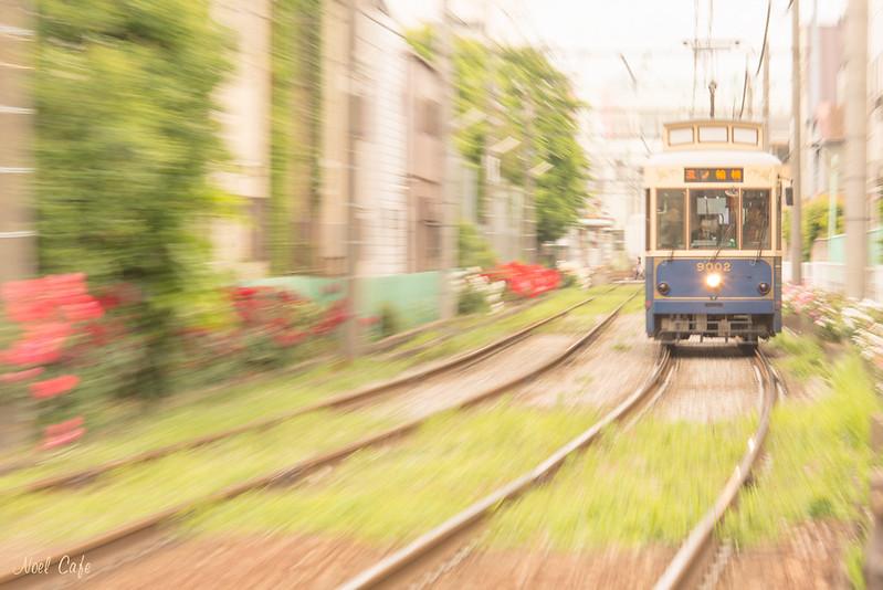 レトロ列車が行く! by Noël Café