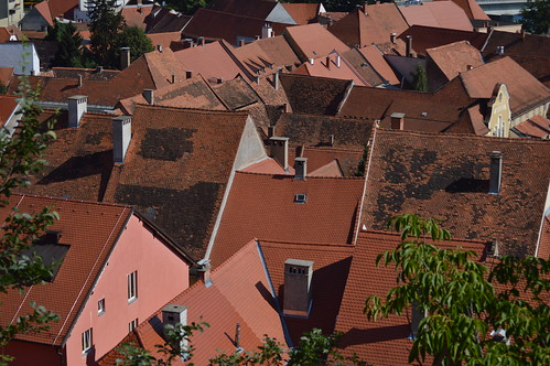 The roofs of Ptuj | by Angelo Hulshout