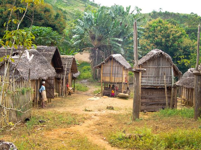 Madagascar5 - 066